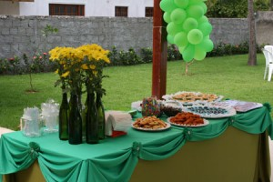 niver_060909 011